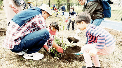 ゆぐちよしゆき 街の⽊のいのちをつなぐ、苗⽊作りと植樹プロジェクト