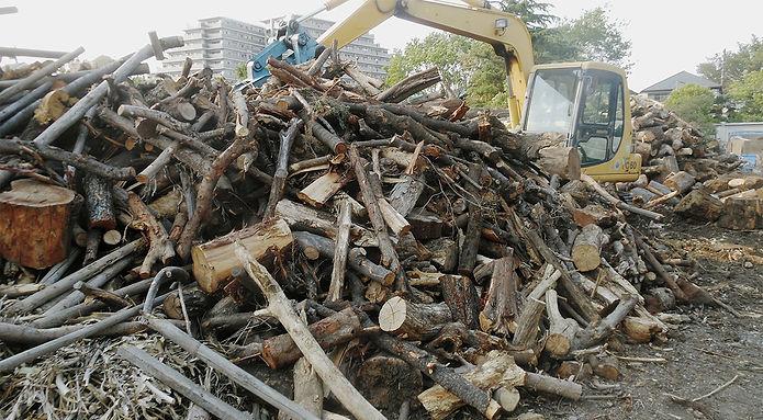 工事現場で、伐られた丸太
