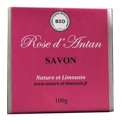 Savon Rose d'Antan