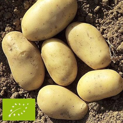 pomme de terre nouvelle anoé AB 1kg
