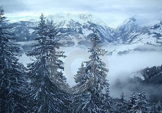Alpine Frost.jpg
