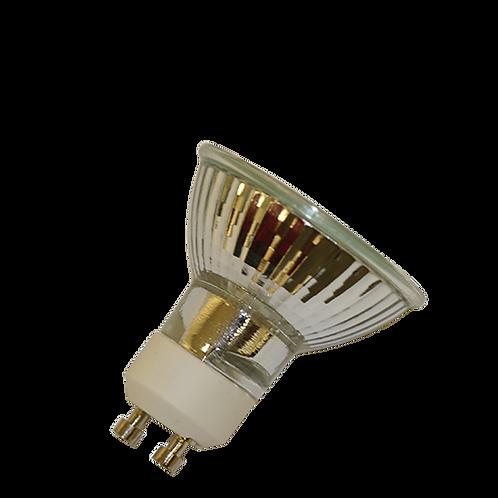 NP5 Bulb