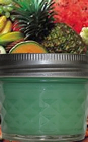 Country Candles 4 oz-Fruity Delights