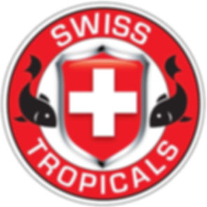 Swiss Tropicals 12-30-19.JPG