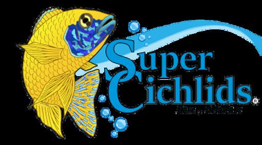 Super Cichlids Logo.png