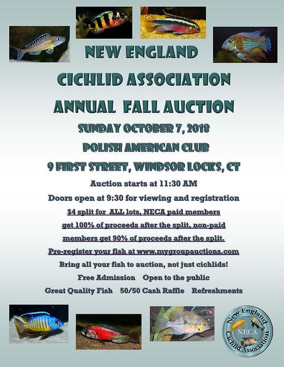 NECA Auction Flyer Fall 2018.jpg
