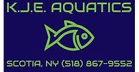 KJE Aquatics.jpg
