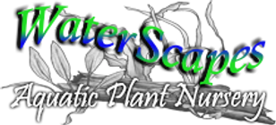 Waterscapes Nursery Logo.png