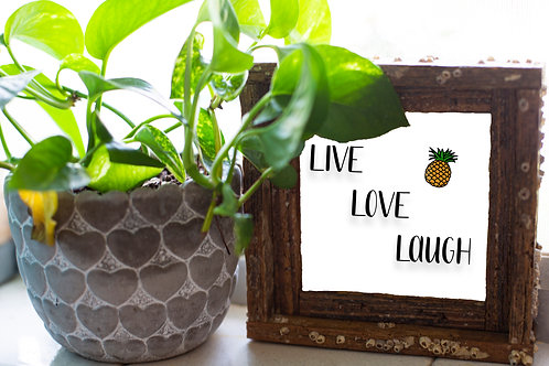 Live, Love, Laugh white, , small frame, Florida keys , size 6x6