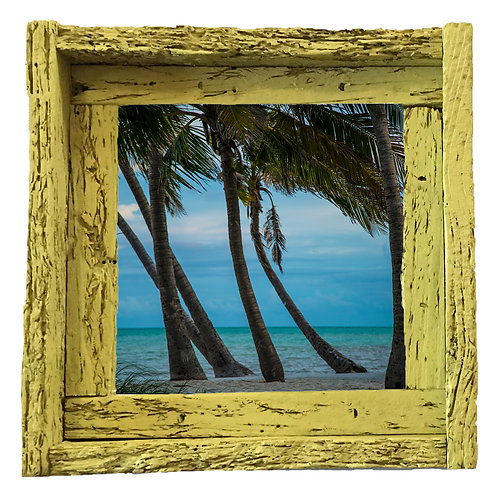 Smathers beach palms, Key west, small frame, Florida keys , Small frame size 6x