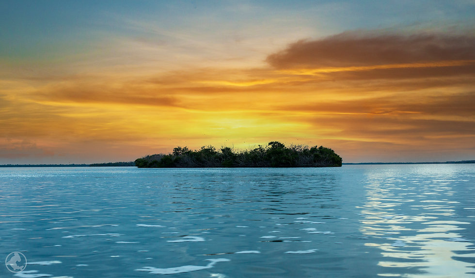 Sunset- glass  2 copy.jpg