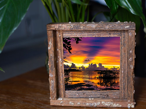 Contents island, small frame, Florida keys , Small frame size 6x6