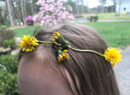 Dandelion crowns over capes anyway
