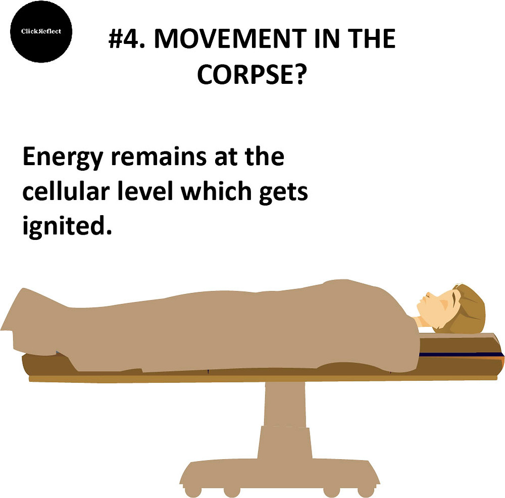 Movement in corpse