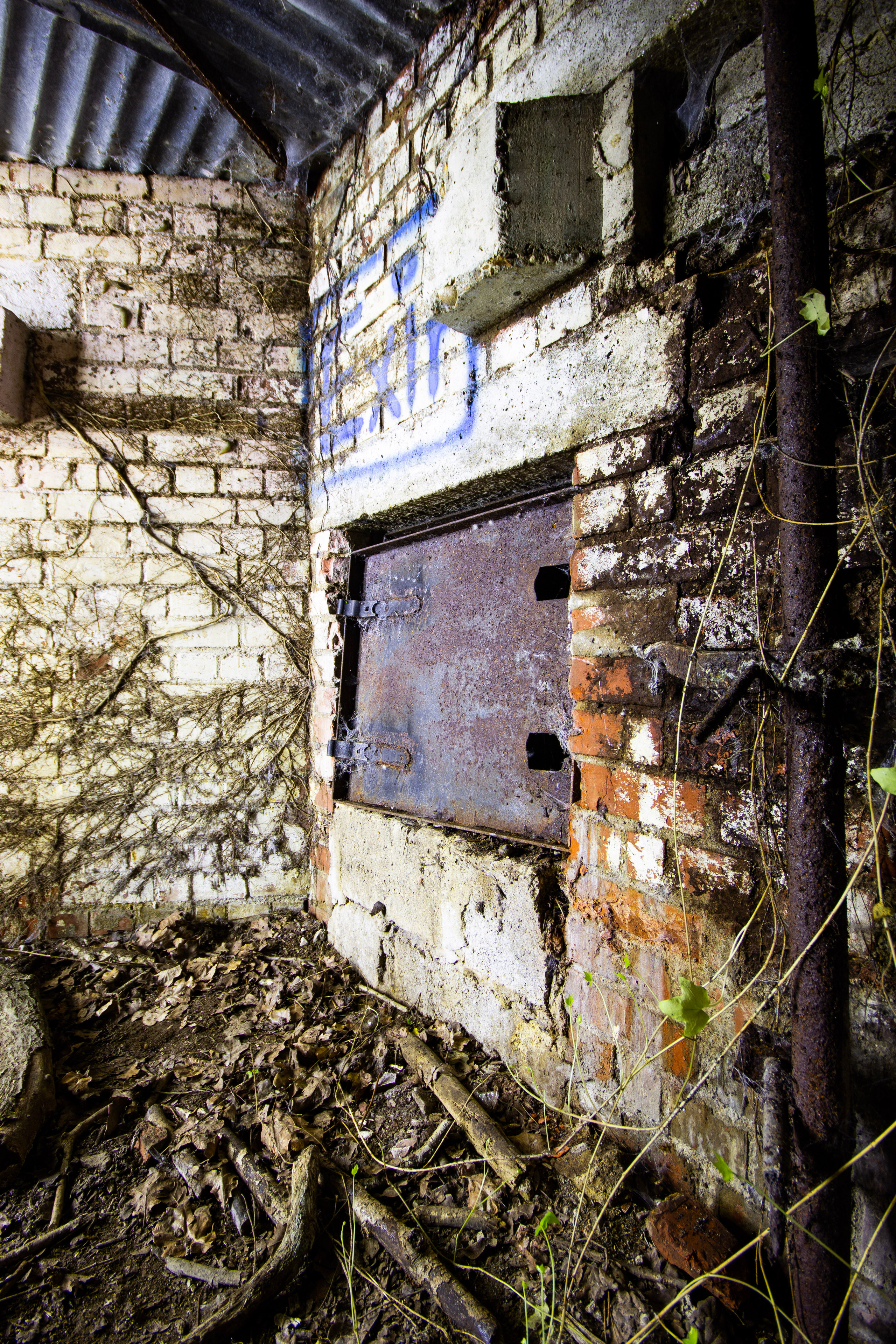 Original Metal Door