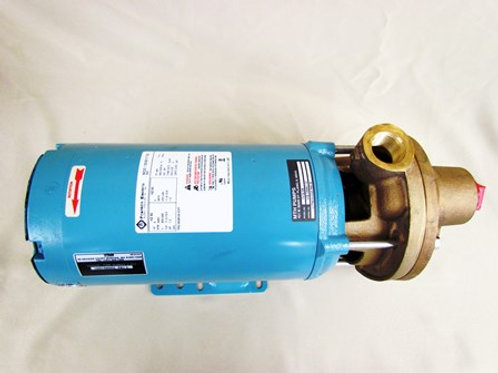 SL10001599302 - Assembly, Pump with Motor