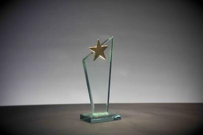 star-plaque-award-photography.jpg