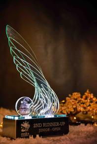 australasia-award-photography.jpg