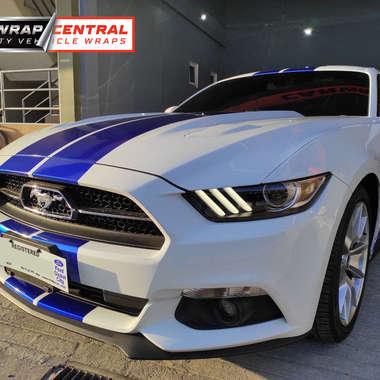 ford-mustang-racing-stripes.jpg