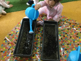 Parramatta - Gardening exploration