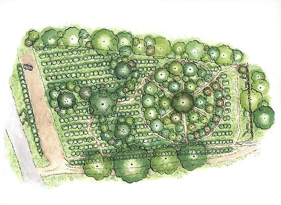 Plan_Jardin-Forêt_par_Eva_Zimmermann.