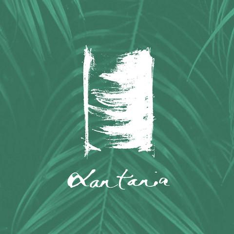 Lan Tania