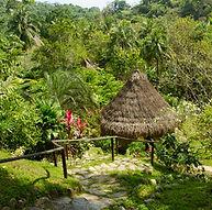 Réserve naturelle, Minca, Colombie