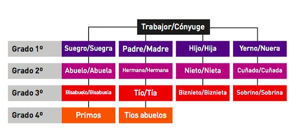 GRADOS CONSAGUINIDAD.png