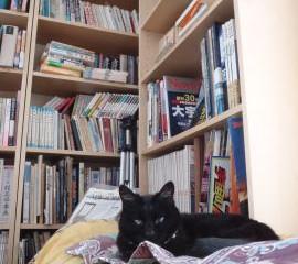 図書ネコnorah