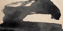 RS034