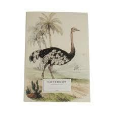 A LA - Notebook ostrich