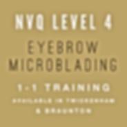 NVQ Level 4 Eyebrow Microblading Training
