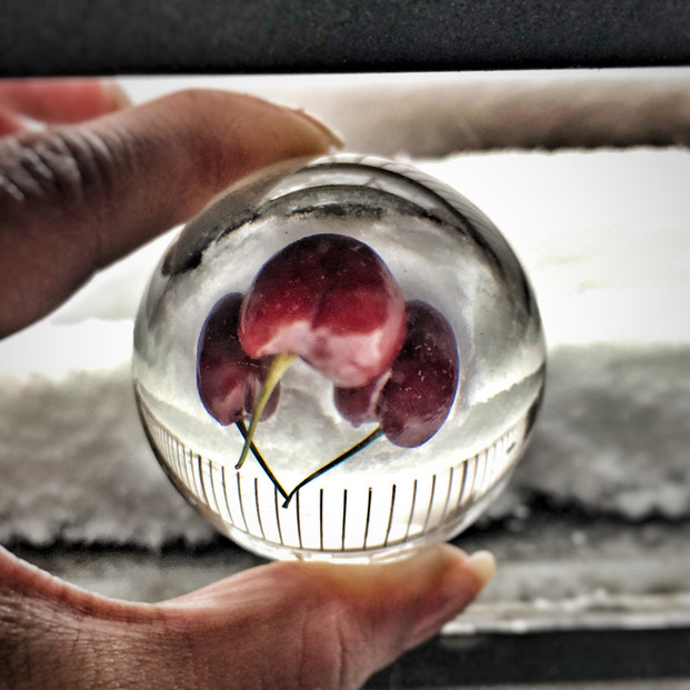 Glass Sphere fun4 Cherry Trio