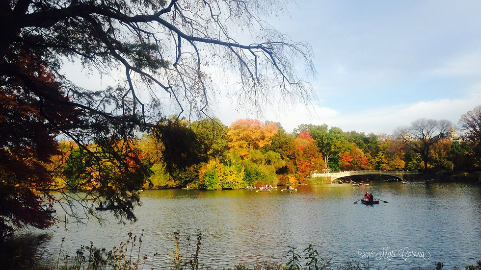 On Central Pond