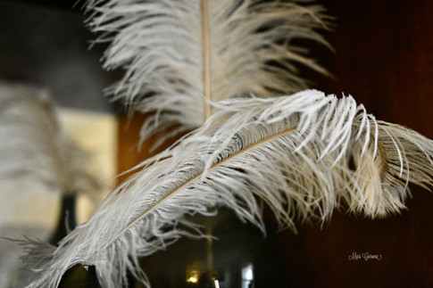 Lite as a Feather