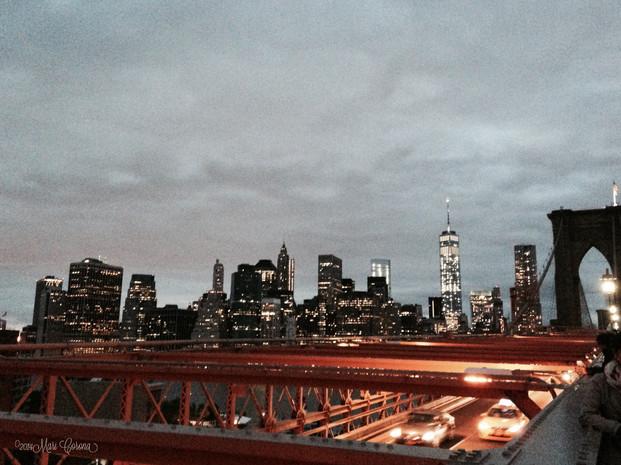 Brooklyn Bridge Views