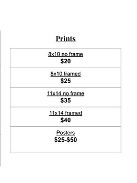 print price list.PNG