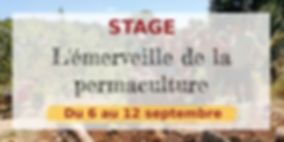 stage_émerveille_sept.jpg