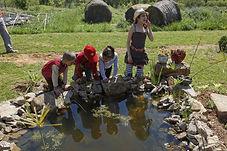 Découverte de la mare avec les enfants