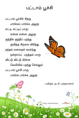பட்டாம் பூச்சி / Pattaam Poochi