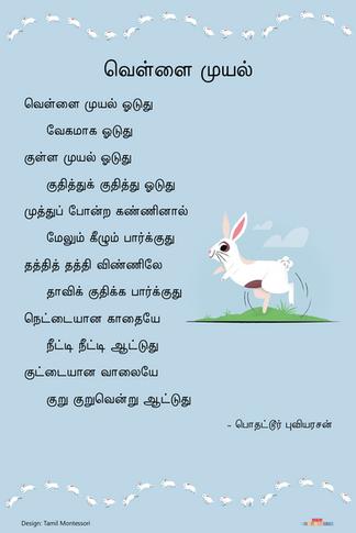 வெள்ளை முயல் / Vellai Muyal
