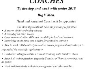 2018 Big V Coaching Applications now open.