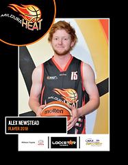 Alex Newstead 15.png