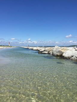 tide pools at Barnegat Inlet