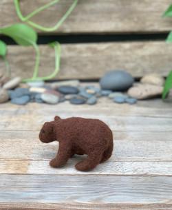 Sophie brown bear 3