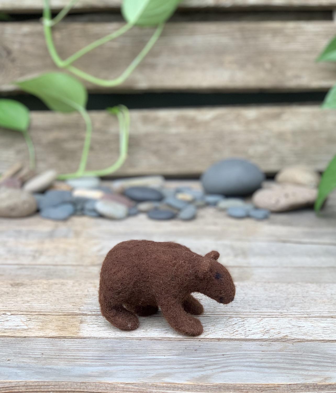 Sophie brown bear 4
