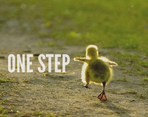 One-Step Plan
