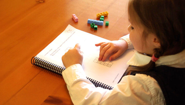 Grade 1 Student studying math