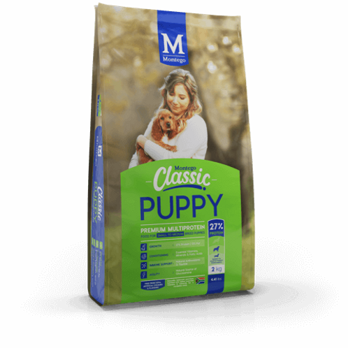 Montego Classic Small puppy