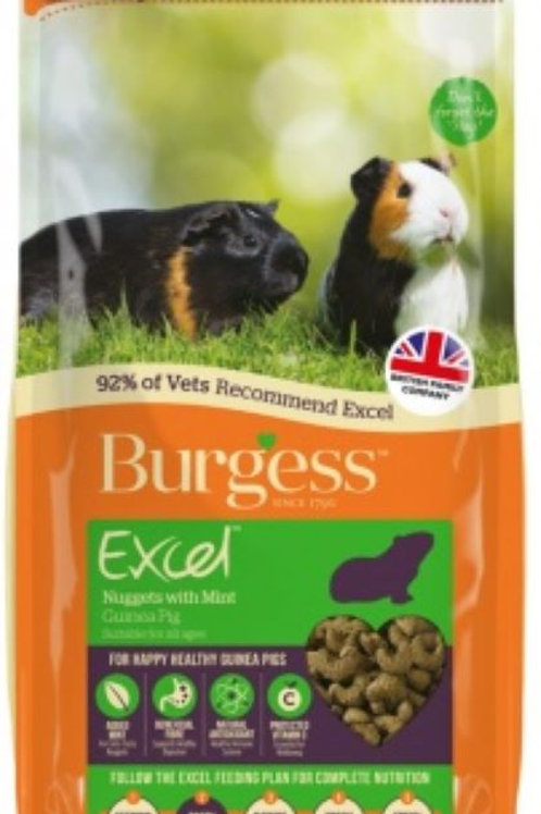 Burgess Guinea Pig Nuggets with mint